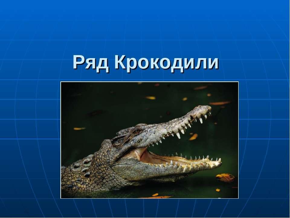 Ряд Крокодили
