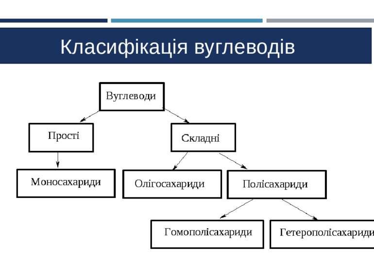 Класифікація вуглеводів