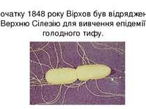 На початку 1848 року Вірхов був відряджений у Верхню Сілезію для вивчення епі...