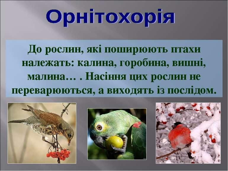 До рослин, які поширюють птахи належать: калина, горобина, вишні, малина… . Н...