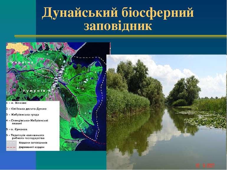 Дунайський біосферний заповідник