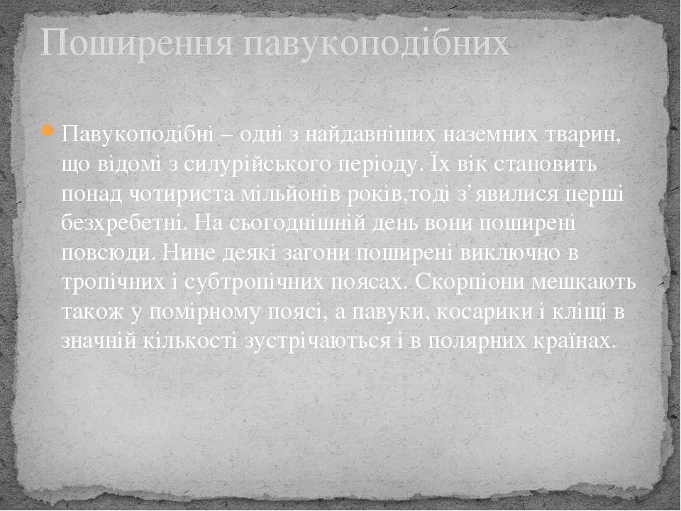 Павукоподібні – одні з найдавніших наземних тварин, що відомі з силурійського...