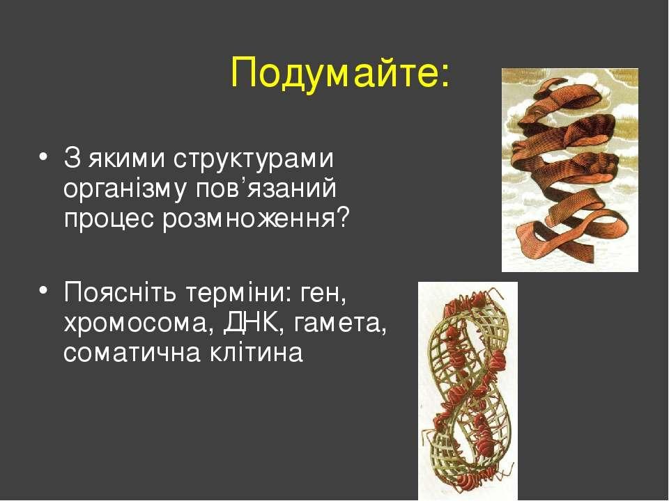 Подумайте: З якими структурами організму пов'язаний процес розмноження? Поясн...