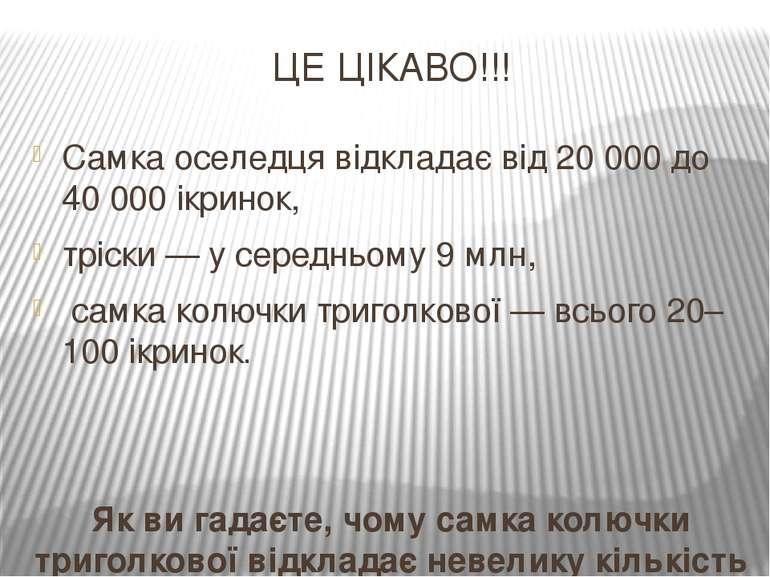 ЦЕ ЦІКАВО!!! Самка оселедця відкладає від 20000 до 40000 ікринок, тріски — ...