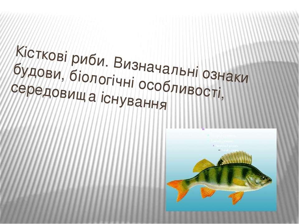 Кісткові риби. Визначальні ознаки будови, біологічні особливості, середовища ...