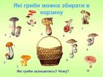 Які гриби можна збирати в корзину Які гриби залишились? Чому? 1 2 3 4 5 6 7 8...