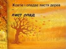 Жовтіє і опадає листя дерев – листопад