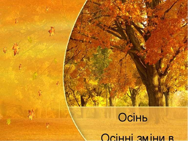 Осінь Осінні зміни в природі