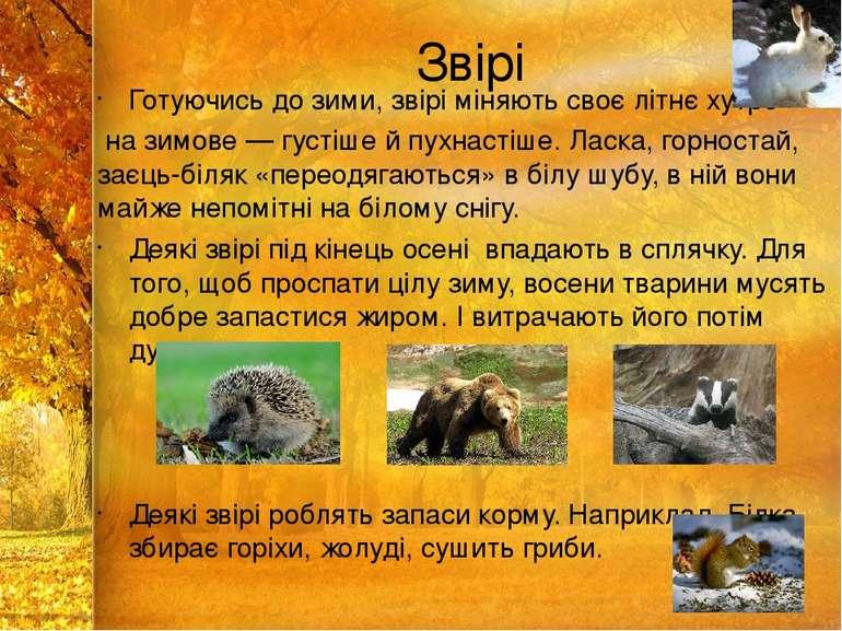 Звірі Готуючись до зими, звірі міняють своє літнє хутро на зимове — густіше й...