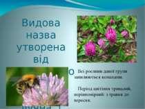 Видова назва утворена від латинського слова, що означав лучна, і відбиває осо...