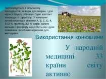 Використання конюшини У народній медицині 33 країни світу активно використову...