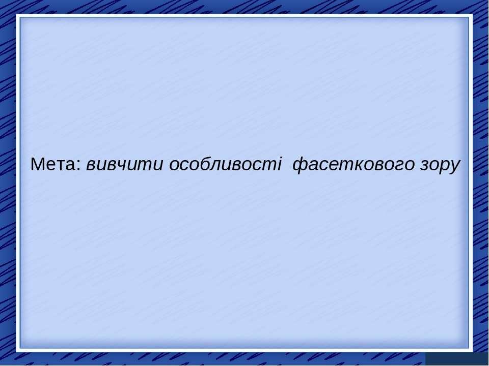 Мета: вивчити особливості фасеткового зору