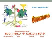 Що це за реакція? енергія сонячного світла 6СО2 + 6Н2О С6Н12О6 + 6О2 вуглукис...