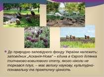 """До природно-заповідного фонду України належить: заповідник """"Асканія-Нова"""" – є..."""