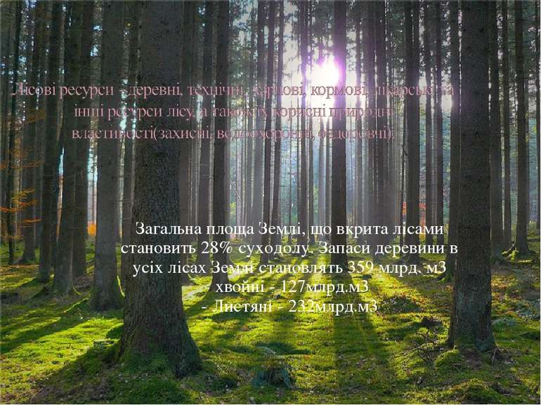 Загальна площа Землі, що вкрита лісами становить 28% суходолу. Запаси деревин...