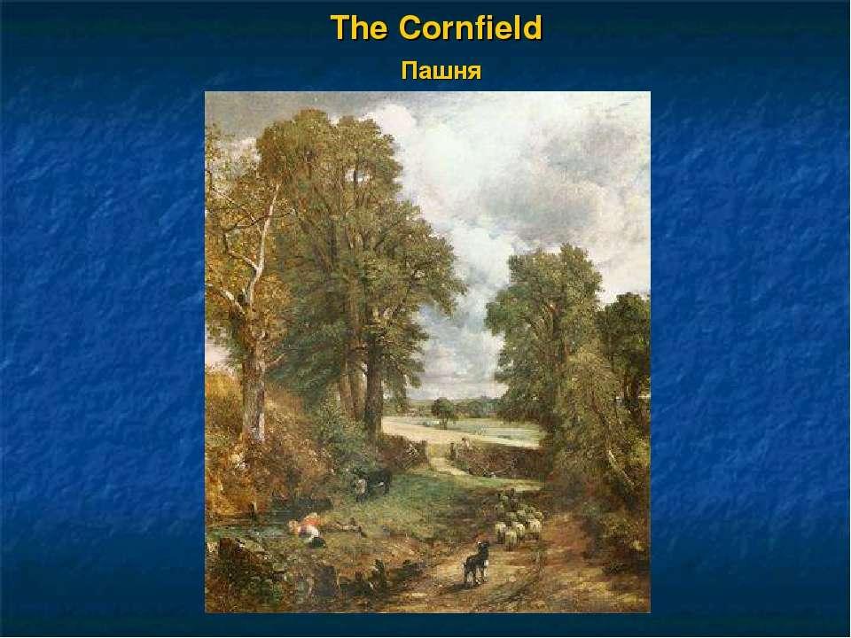 The Cornfield Пашня