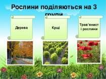 Рослини поділяються на 3 групи Дерева Кущі Трав'янисті рослини