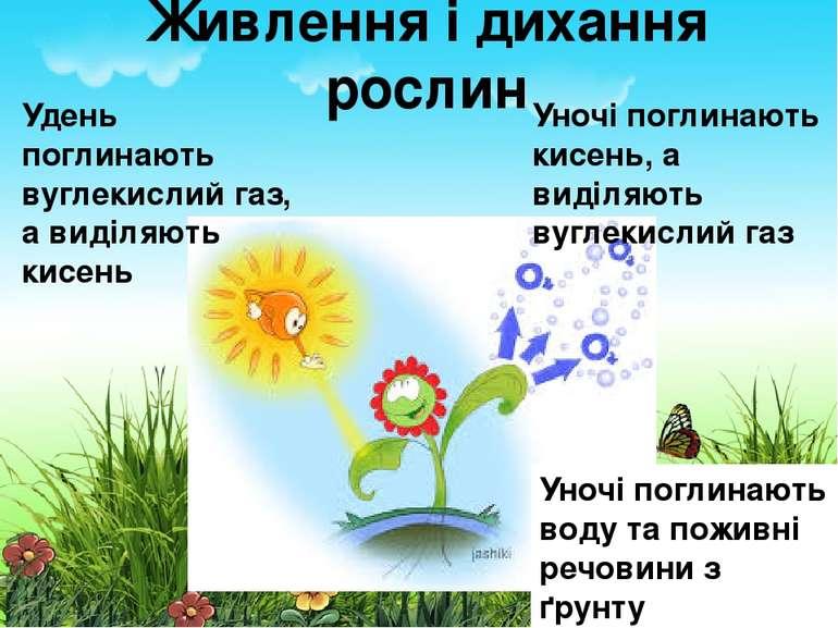 Живлення і дихання рослин Удень поглинають вуглекислий газ, а виділяють кисен...