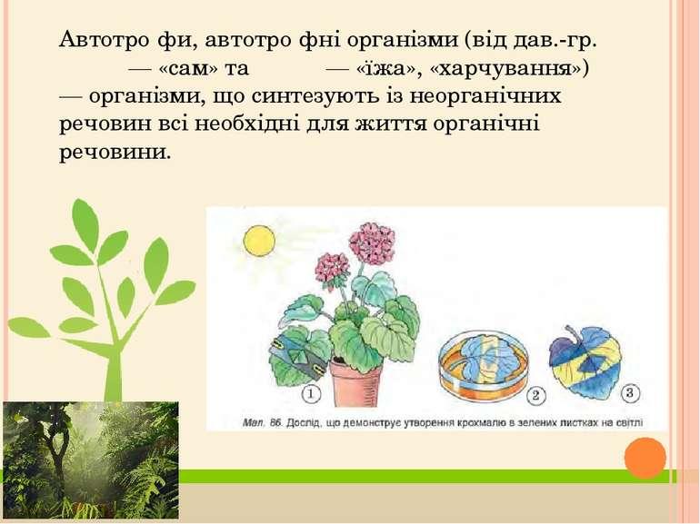 Автотро фи, автотро фні організми (від дав.-гр. αὐτός — «сам» та τροφή — «їжа...