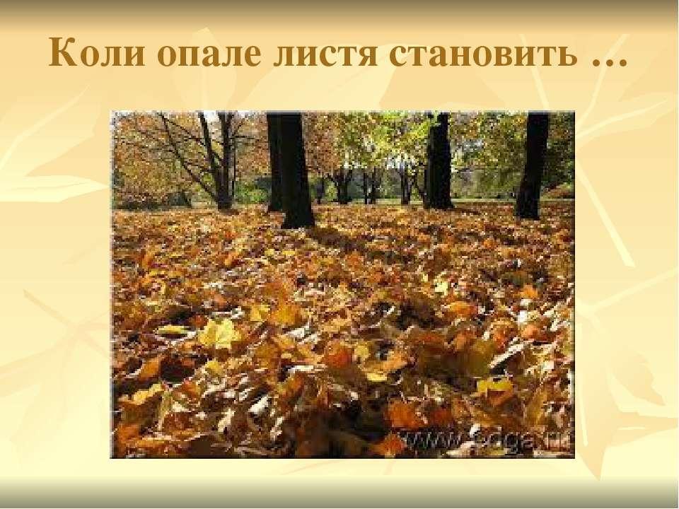 Коли опале листя становить …