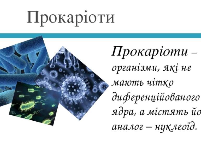 Прокаріоти Прокаріоти–це організми, які не мають чітко диференційованого яд...