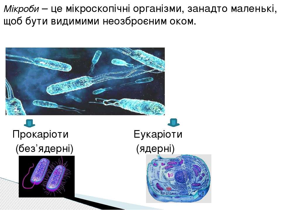 Мікроби – це мікроскопічні організми, занадто маленькі, щоб бути видимими нео...