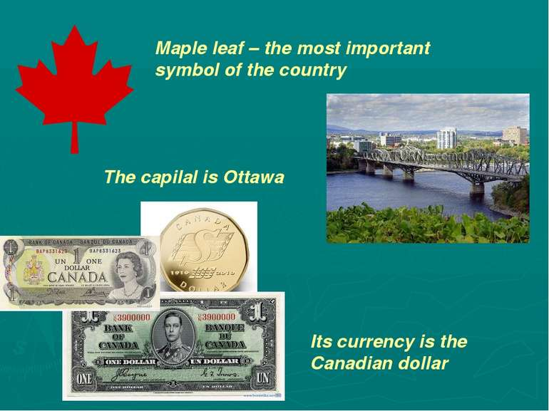 Maple leaf – the most important symbol of the country The capilal is Ottawa I...