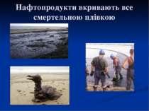 Нафтопродукти вкривають все смертельною плівкою