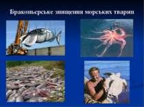 Браконьєрське знищення морських тварин