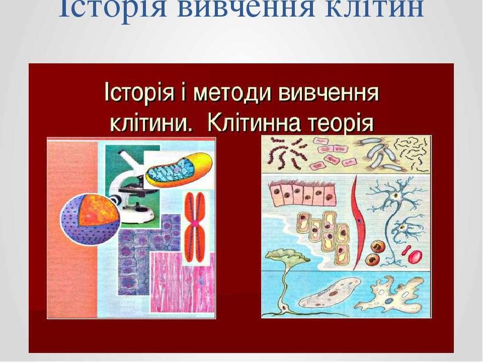 Історія вивчення клітин