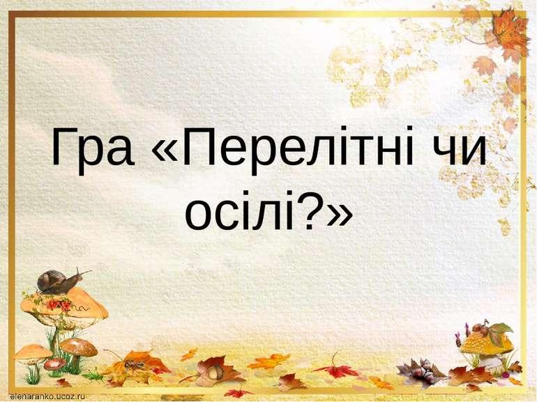 Гра «Перелітні чи осілі?»
