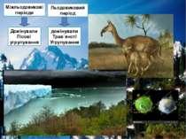 Льодовиковий період Домінували Лісові угрупування домінували Трав`янсті Угруп...