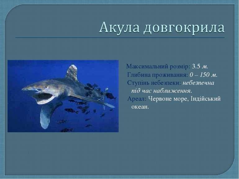 Максимальний розмір: 3.5 м. Глибина проживання: 0 – 150 м. Ступінь небезпеки:...