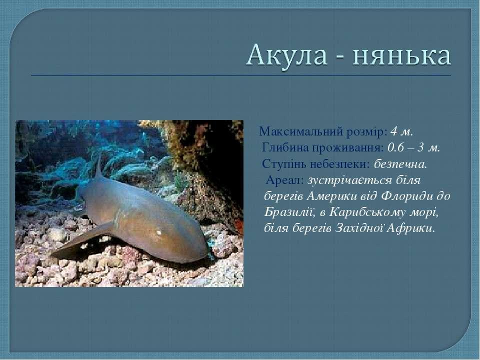 Максимальний розмір: 4 м. Глибина проживання: 0.6 – 3 м. Ступінь небезпеки: б...