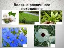 Волокна рослинного походження Бавовник Конопля Кенаф Джут Льон