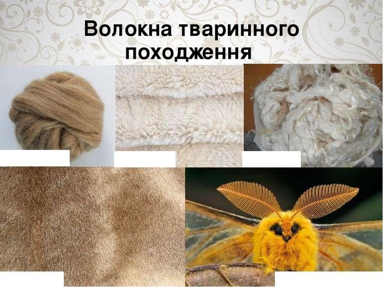 Волокна тваринного походження Вовна овеча Вовнакозяча Вовна верблюжа Вовнаол...