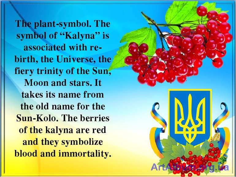 "The plant-symbol. The symbol of ""Kalyna"" is associated with re-birth, the Uni..."