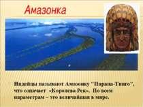 """Индейцы называют Амазонку """"Парана-Тинго"""", что означает «Королева Рек». По все..."""