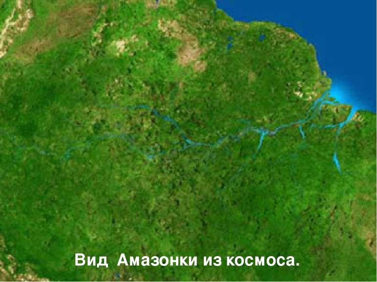 Вид Амазонки из космоса.