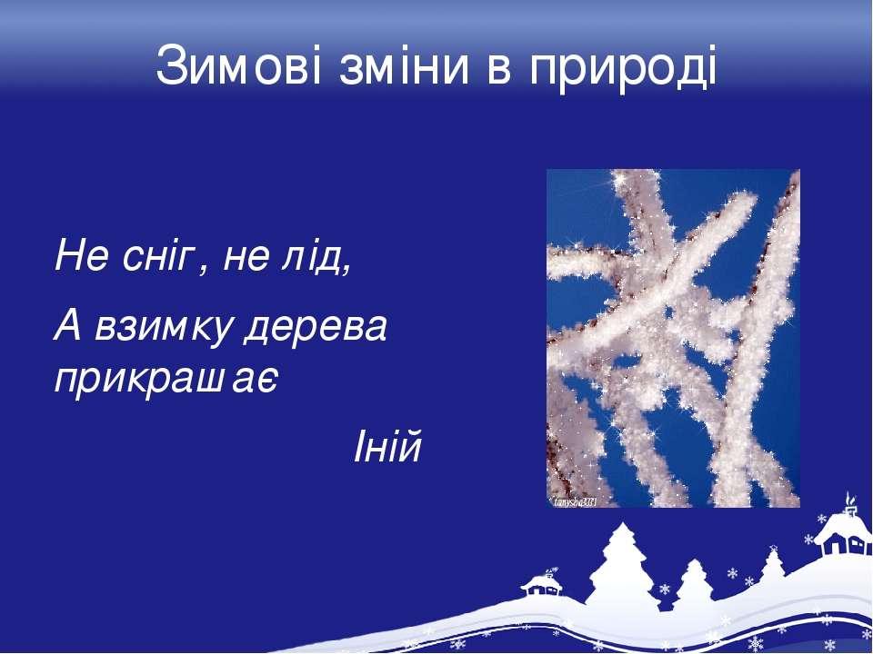 Зимові зміни в природі Не сніг, не лід, А взимку дерева прикрашає Іній