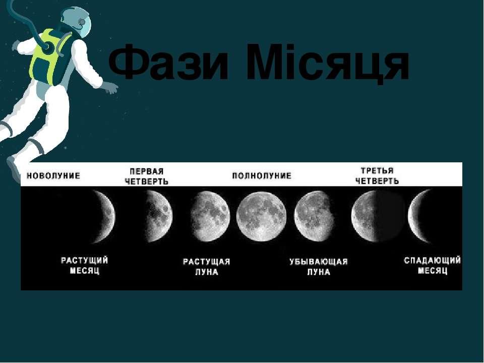 Фази Місяця