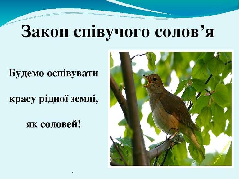 Будемо оспівувати красу рідної землі, як соловей! Закон співучого солов'я .