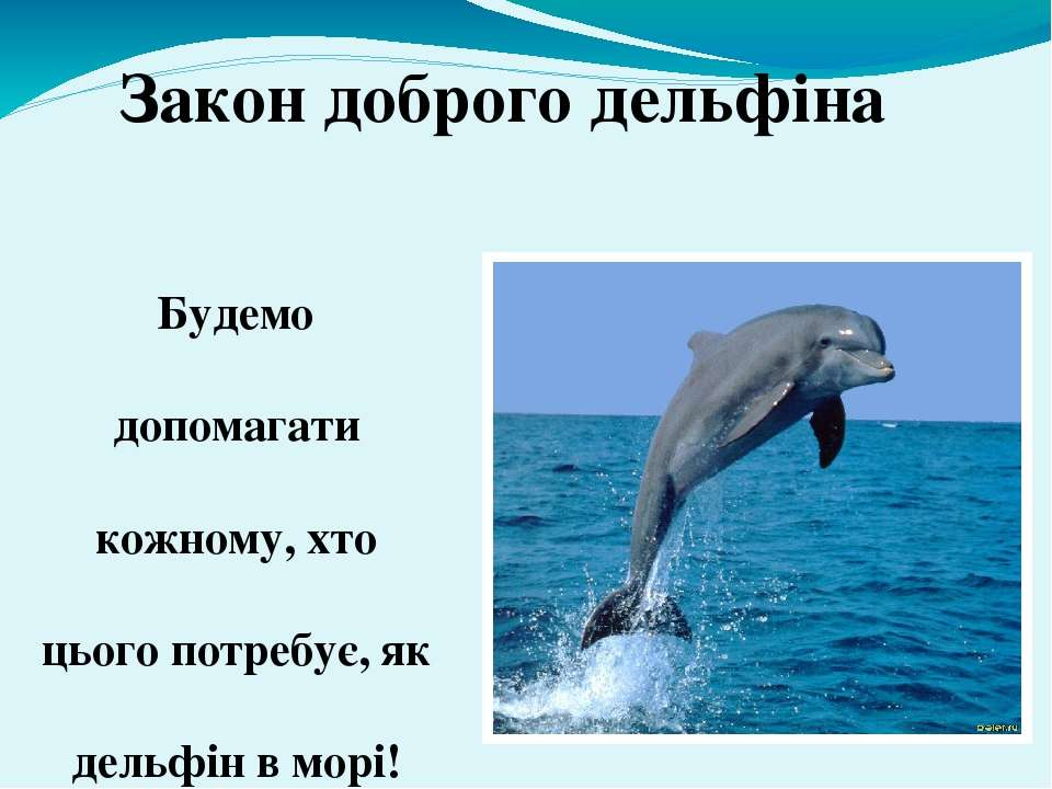Будемо допомагати кожному, хто цього потребує, як дельфін в морі! Закон добро...