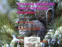 ПРАВИЛА ВВЕДЕННЯ ЛІКІВ В ОРГАНІЗМ ТВАРИНИ ЕНТЕРАЛЬНО (ЧЕРЕЗ КИШЕЧНИК) – КЛІЗМ...