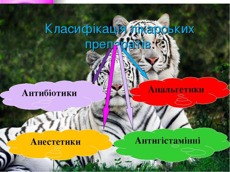 Класифікація лікарських препаратів: Антибіотики Анальгетики Анестетики Антигі...