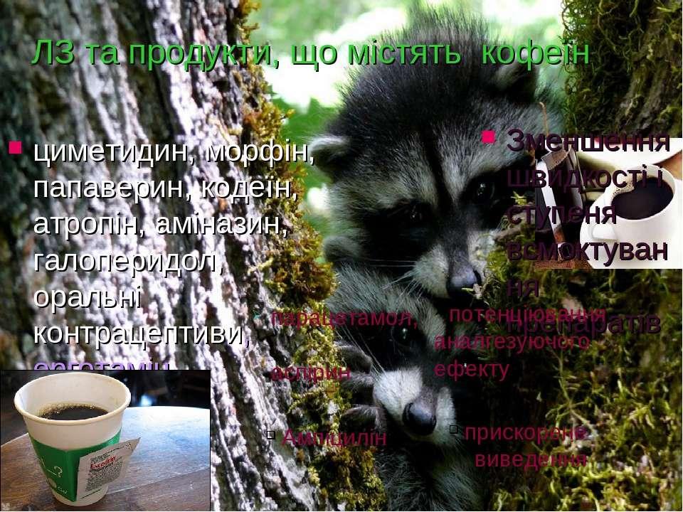 ЛЗ та продукти, що містять кофеїн циметидин, морфін, папаверин, кодеїн, атроп...