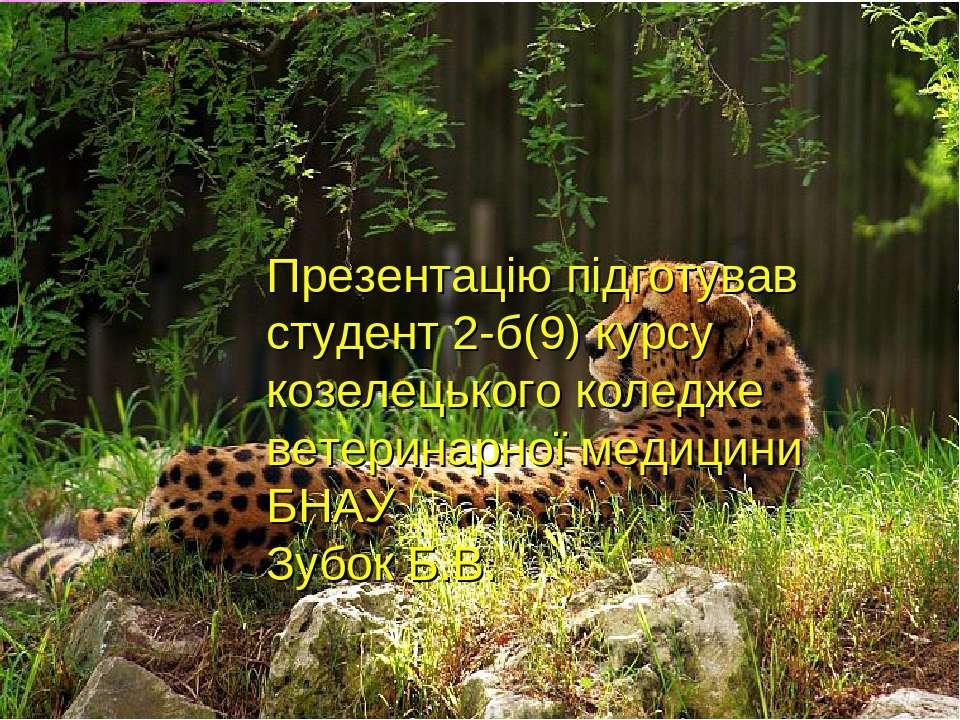 Презентацію підготував студент 2-б(9) курсу козелецького коледже ветеринарної...