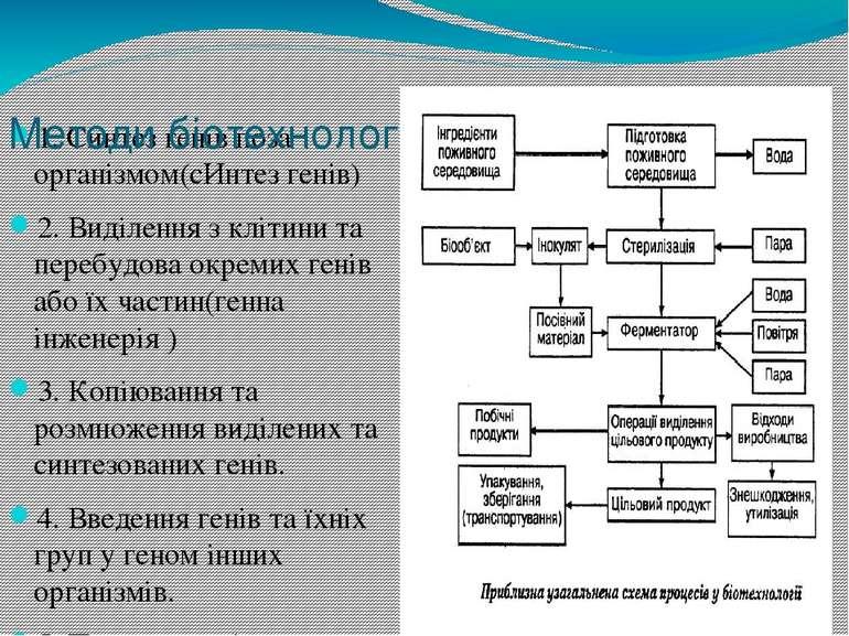 1.Синтез генів поза організмом(сИнтез генів) 2. Виділення з клітини та переб...