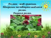 Рослини - живі організми. Мінеральне та повітряне живлення рослин. Дихання ро...