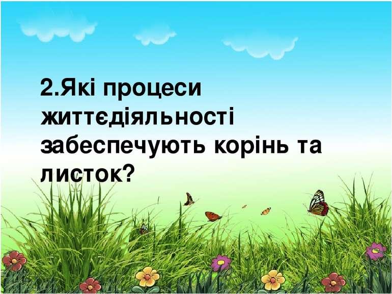 2.Які процеси життєдіяльності забеспечують корінь та листок?